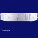 Светодиодный потолочный светильник MX460 LED-6-YL