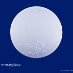 Светильник MX LED 490-D0.5*48-01 6500K